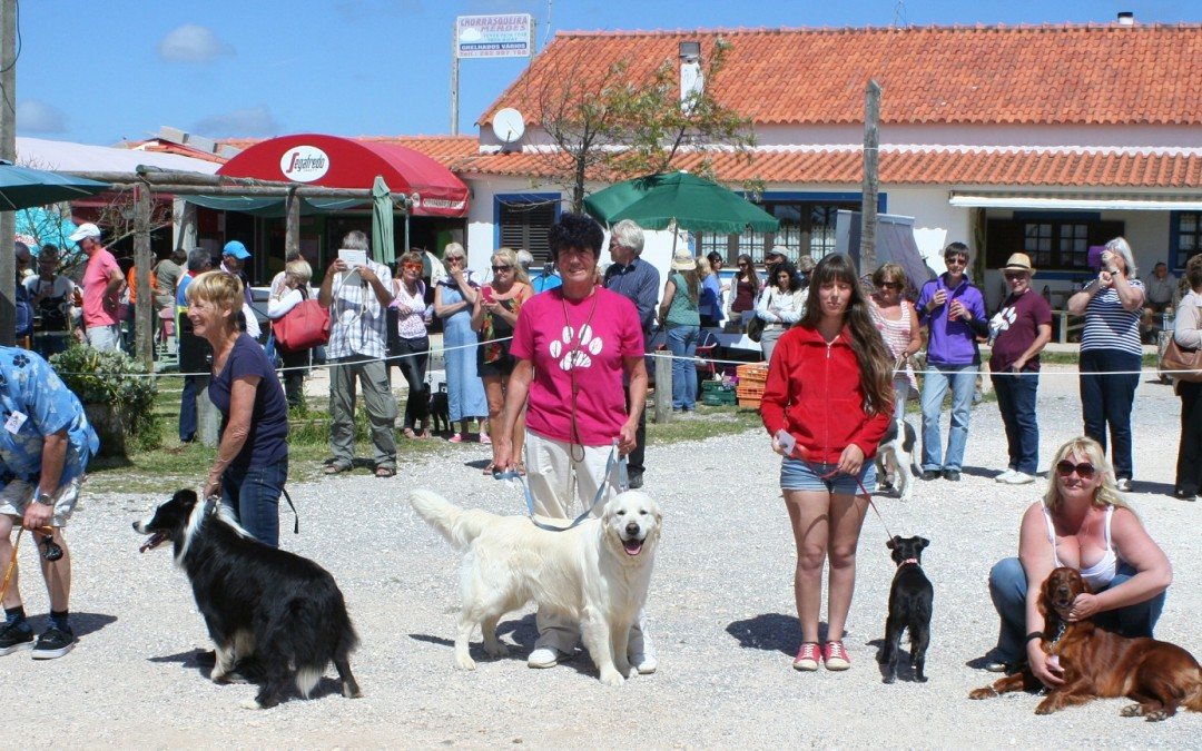 West Coast Dog Show Round Up